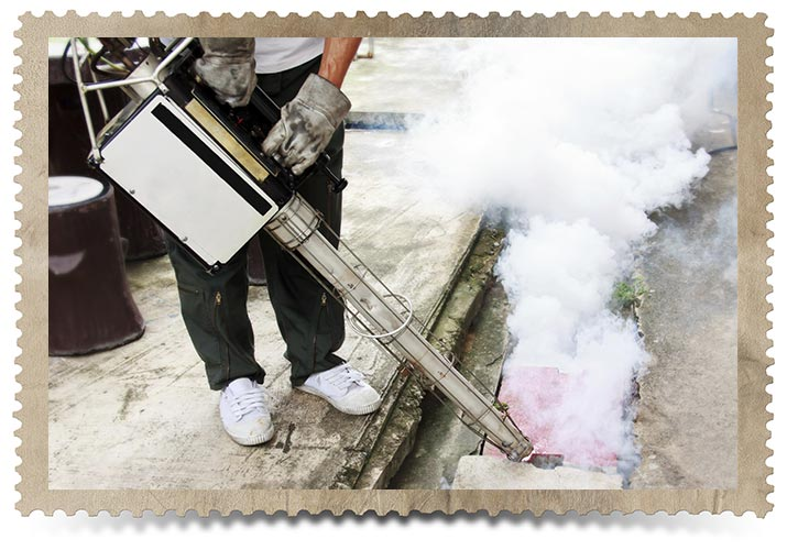 Pest Control via Chemical Fumigation in the Past