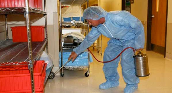How to Hire the Right Bed Bug Exterminator